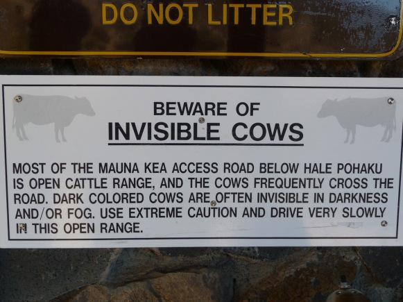 Beware of Invisible Cows