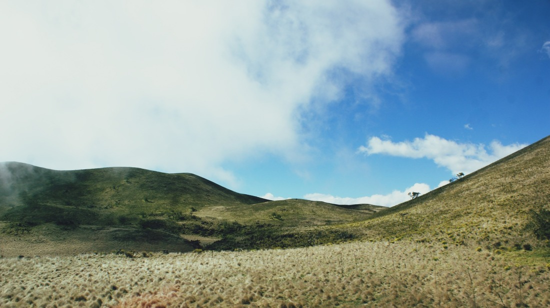 Slopes of Mauna Kea